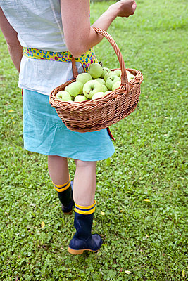 Fresh apples - p4541482 by Lubitz + Dorner