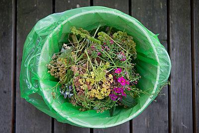 Organic waste - p441m957486 by Maria Dorner