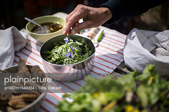 Preparing a healthy salad with wild herbs - p1007m1540354 by Tilby Vattard