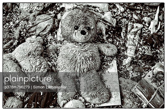 Soft toys rotting - p378m796279 by Simon Larbalestier