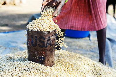 Africa, Uganda, Market stall with grain - p1167m2283452 by Maria Schiffer
