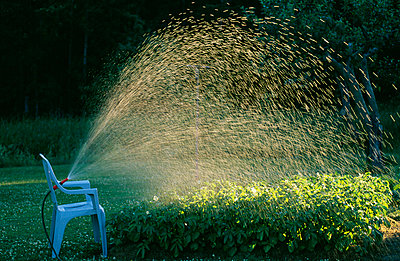 Water sprinkling through pipe on shrubs at park - p5752129f by Stefan Ortenblad