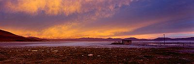 Laguna Colorada - p844m1119011 by Markus Renner