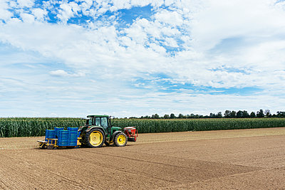 Traktor beim Ernten von Saatgut - p728m1170243 von Peter Nitsch