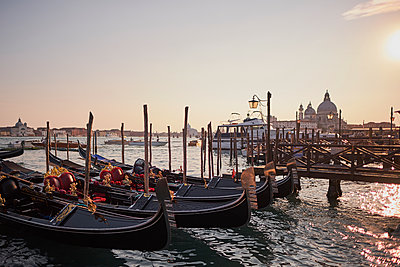 Venetian gondolas in the adriatic sea on the edge of San Marco, Venice, Italy, 2017 - p1362m1584091 by Charles Knox