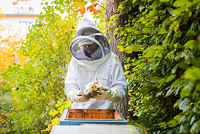 Beekeeper near hives - p312m2139061 by Viktor Holm
