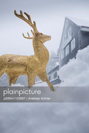 Goldener Hirsch - p335m1123067 von Andreas Körner