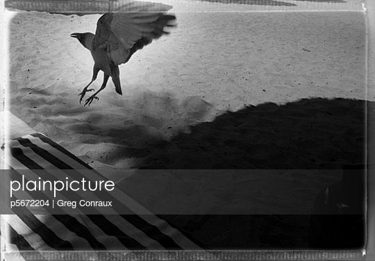 p5672204 von Greg Conraux
