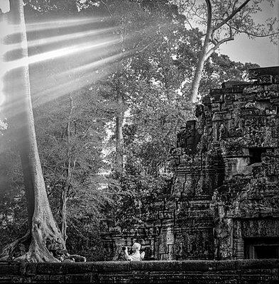 Light rays mystically stream through trees over Ta Prohm temple as a tourist videos, Angkor, Siem Reap, Cambodia, 2005, Southeast Asia - p934m893097 by Sébastien Löffler