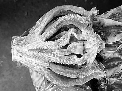 Meeresfrüchte Nahaufnahme - p393m1452267 von Manuel Krug