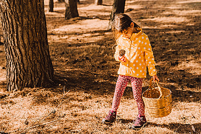 Cute girl looking at pine cone while carrying wicker basket in park on sunny day - p300m2225451 by Eloisa Ramos