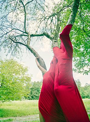 Mit dem Baum eins sein - p362m1541445 von André Wagner