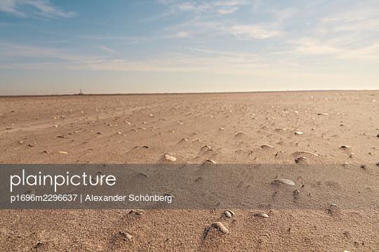 Lighthouse Westerheversand at low tide, Schleswig-Holstein - p1696m2296637 by Alexander Schönberg