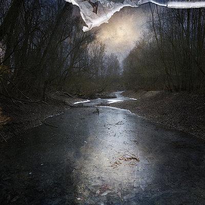 Leaves Under Ice - p1633m2210011 by Bernd Webler