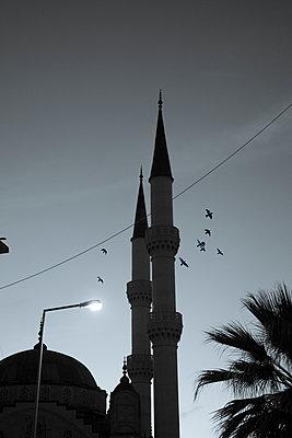 Mosque - p975m1110528 by Hayden Verry