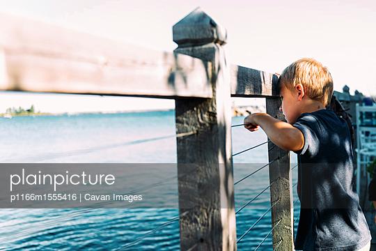 p1166m1555416 von Cavan Images