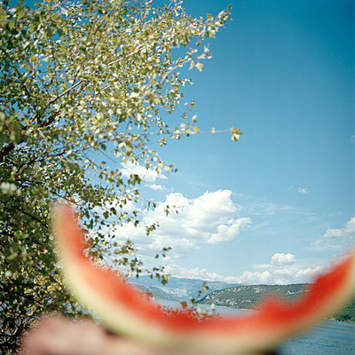 Leftovers of watermelon with mountain scenery in the background - p1468m1558905 by Philippe Leroux