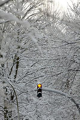 Winterlanschaft mit roter Ampel - p4150416 von Tanja Luther