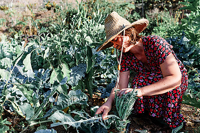 Female farmer wearing sun hat while working in farm on sunny day - p300m2273640 by Angel Santana Garcia