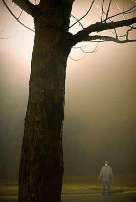 Man and tree illuminated at night - p3720434 by James Godman