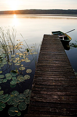 Water lilies and boat - p4240262 by Justin Winz