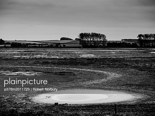 Marshland landscape - p378m2011729 by Robert Norbury