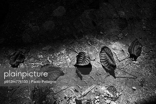 p912m776133 von Paolo Pellegrin
