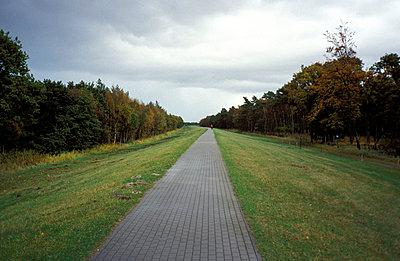 Weg auf Deich - p0190183 von Hartmut Gerbsch