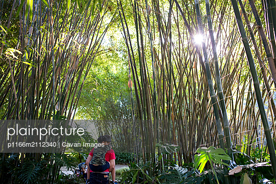 father holds son on piggyback as they walk through a bamboo forest - p1166m2112340 by Cavan Images