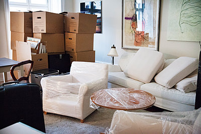 Moving boxes in living room - p312m1107511f by Lena Koller