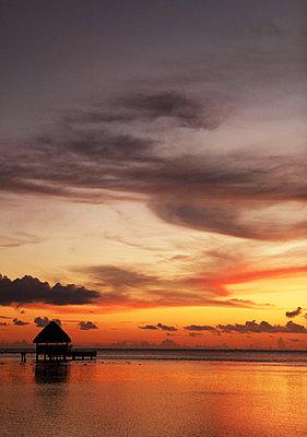 Sonnenuntergang auf Bora Bora - p045m740236 von Jasmin Sander