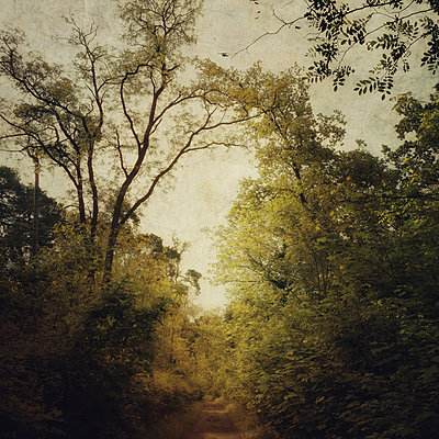 Caminata - p1633m2210051 by Bernd Webler