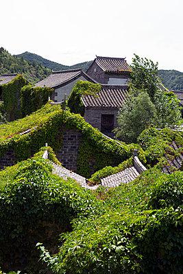 China, Gubeikou, Roofs - p817m2203235 by Daniel K Schweitzer