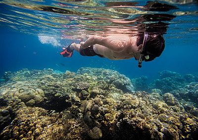Snorkeling in Indian ocean - p1108m1104686 by trubavin