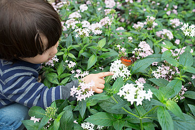 Observing Butterflies - p535m912009 by Michelle Gibson