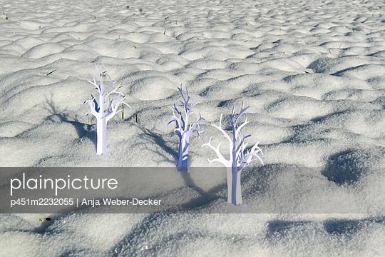 p451m2232055 by Anja Weber-Decker