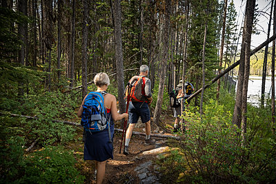 Mature couple backpacking, hiking in forest - p1192m2017213 by Hero Images