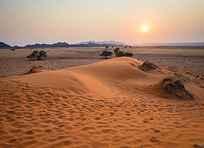 Africa, Namibia, Namib desert, Naukluft National Park, Sossusvlei, Elim dune at sunrise - p300m1568375 von Roy Jankowski