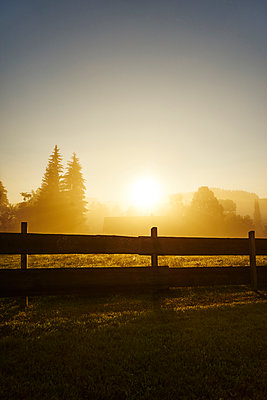 Farmhouse at sunrise, wooden fence in the foreground - p1312m2168095 by Axel Killian