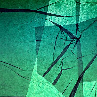 Im grünen Licht - p1578m2150522 von Marcus Hammerschmitt
