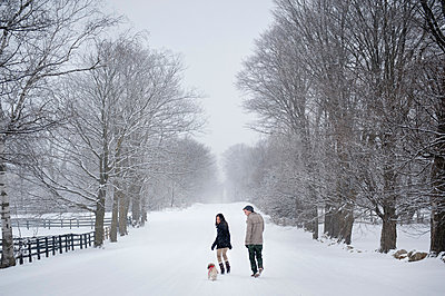 Young couple walking dog in snow covered forest, rear view, Ontario, Canada - p429m2050844 by Sara Monika