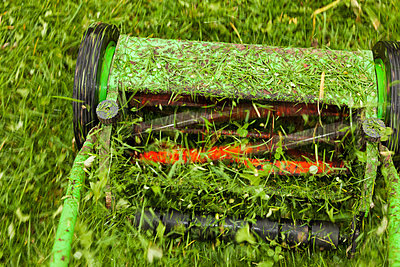Manual lawnmower - p834m885779 by Jakob Börner