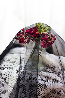 Vase with tulips covered with veil - p1621m2283882 by Anke Doerschlen
