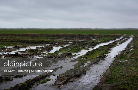 Muddy field - p1132m2168065 by Mischa Keijser
