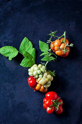 Cherry tomatoes 'Voyage' on dark ground - p300m2079008 by Dieter Heinemann
