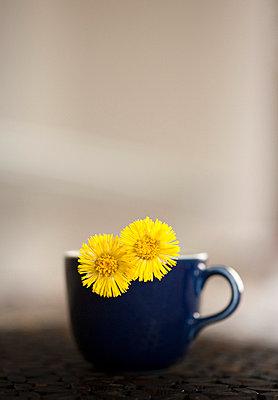Little yellow flowers - p9710031 by Reilika Landen