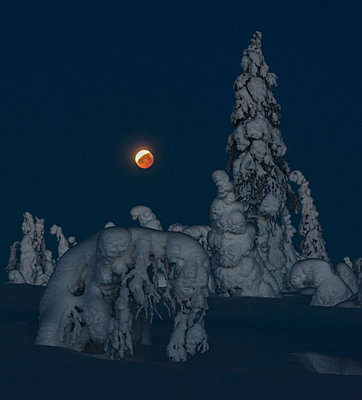 Full moon in winter - p1241m2100345 by Topi Ylä-Mononen