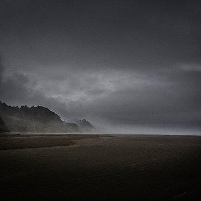 Dramatic Coast on Foggy Day, Pacific Beach, Washington, USA - p694m1403831 by David Atkinson