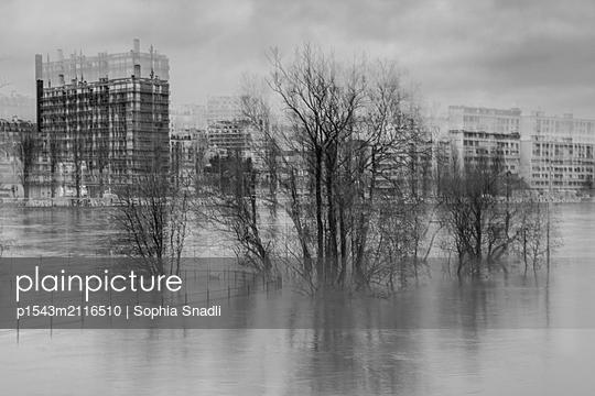 Flood of the Seine  - p1543m2116510 by Sophia Snadli