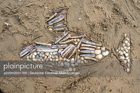 Mosaik, Fisch aus Muscheln - p229m2021769 von Martin Langer